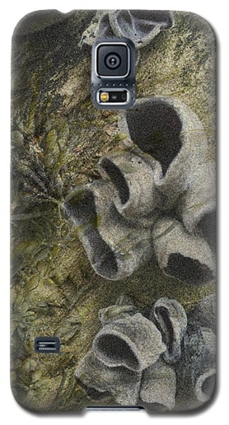 Fungi And Algae Galaxy S5 Case