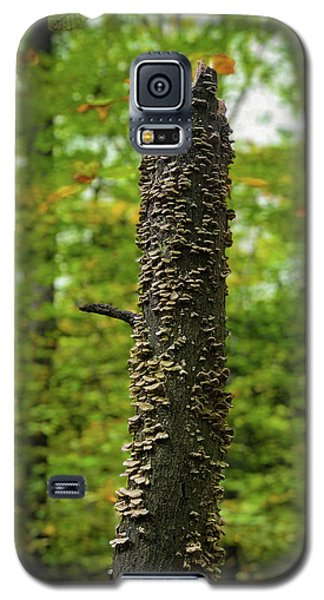 Fungus Among Us Galaxy S5 Case