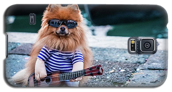 Funny Dog At The Carnival In Venice Galaxy S5 Case
