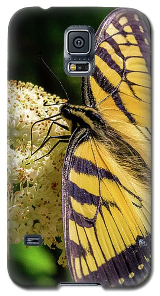 Fuzzy Butterfly Galaxy S5 Case
