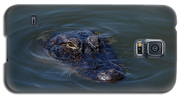 Gator Stare Galaxy S5 Case