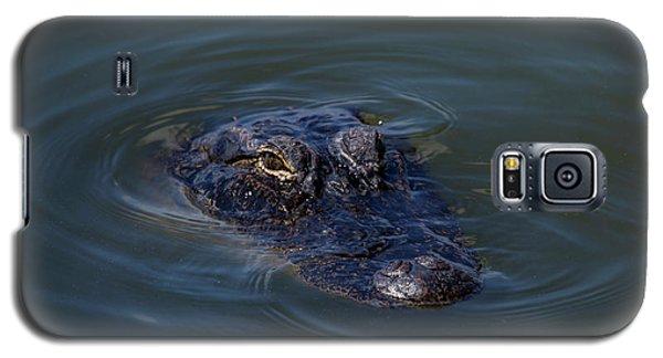 Gator Stare Galaxy S5 Case