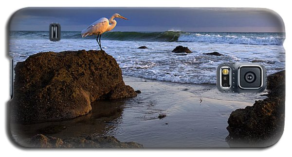 Giant Egret Galaxy S5 Case