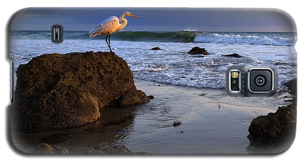 Giant Egret Galaxy S5 Case