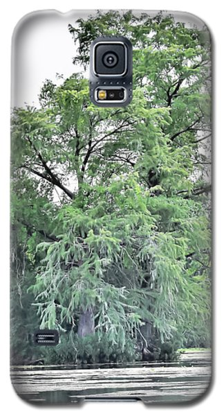 Giant River Tree Galaxy S5 Case