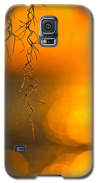 Gilded Moss Galaxy S5 Case