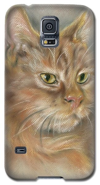 Ginger Tabby Cat With Black And White Whiskers Galaxy S5 Case