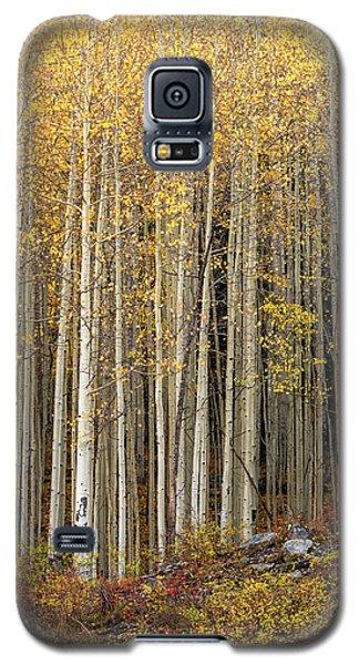 Gold Dust Galaxy S5 Case