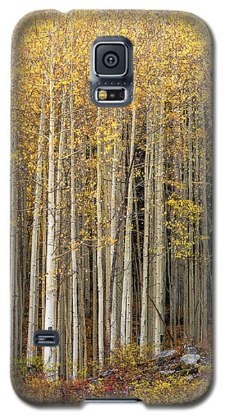 Gold Dust Galaxy S5 Case