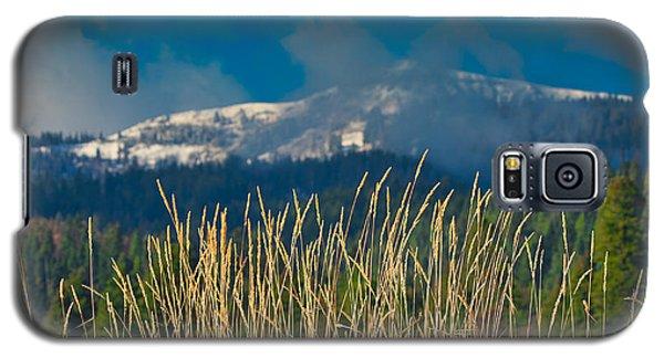 Gold Grass Snowy Peak Galaxy S5 Case