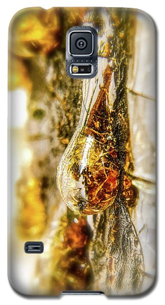 Golden Drop Galaxy S5 Case