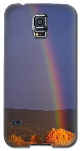 Golden Tree Rainbow Galaxy S5 Case