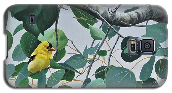Goldfinch And Aspen Galaxy S5 Case