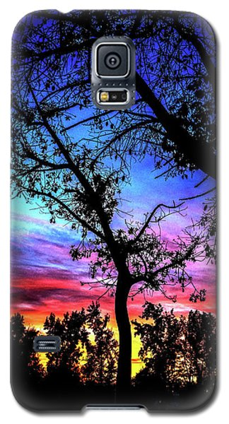 Good Night Leaves In Fall Galaxy S5 Case