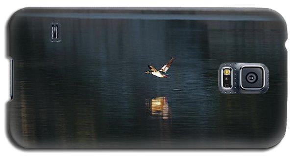 Goosander Galaxy S5 Case