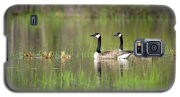 Goose Family #5 Galaxy S5 Case