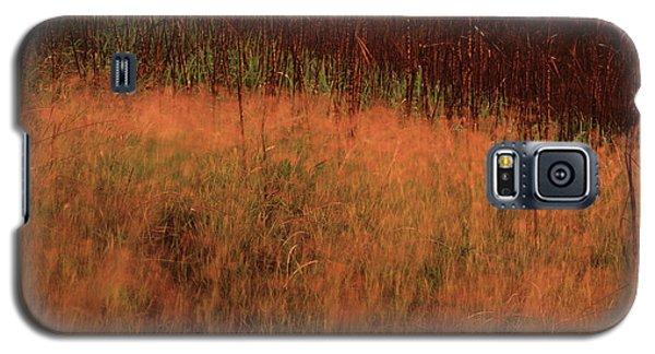 Grasses And Sugarcane, Trinidad Galaxy S5 Case