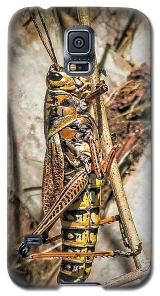 Grasshopper Galaxy S5 Case