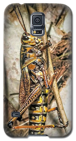 Grasshopper Galaxy S5 Case