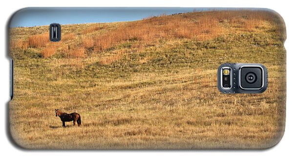 Grazing In The Grass Galaxy S5 Case