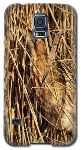 Great Bittern Galaxy S5 Case