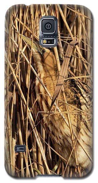 Great Bittern Galaxy S5 Case
