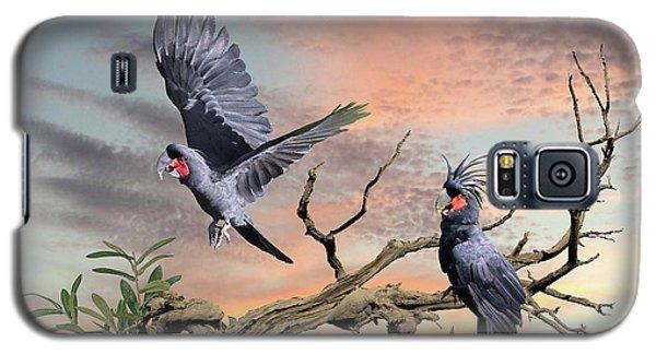 Great Black Cockatoo Pair Galaxy S5 Case