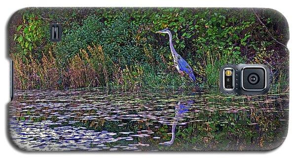 Great Blue Heron In Autumn Galaxy S5 Case