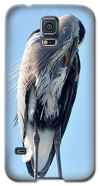 Great Blue Heron Preening On A Roof Galaxy S5 Case