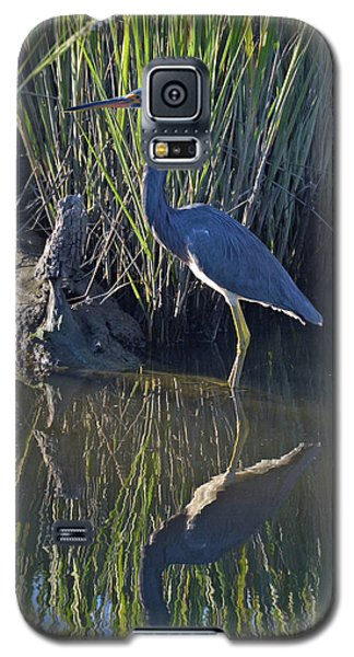 Great Blue Heron Reflecting Galaxy S5 Case