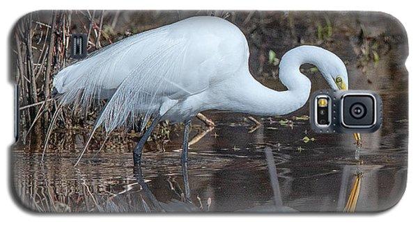 Great Egret In Breeding Plumage Dmsb0154 Galaxy S5 Case