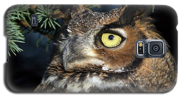 Great Horned Owl 10181801 Galaxy S5 Case