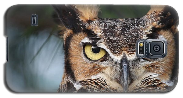 Great Horned Owl Eyes 51518 Galaxy S5 Case
