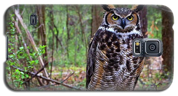 Great Horned Owl Standing On A Tree Log Galaxy S5 Case