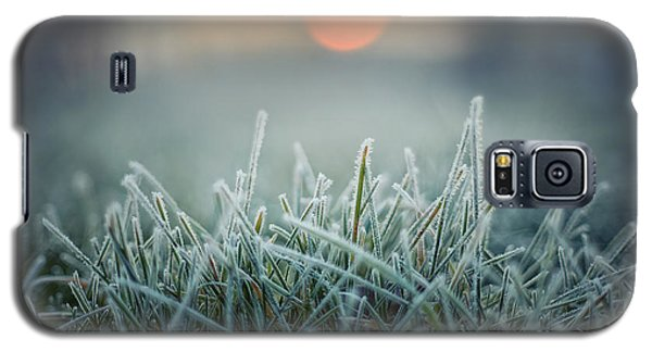 Icy Galaxy S5 Case - Green Grass With Morning Frost And Red by Chromakey