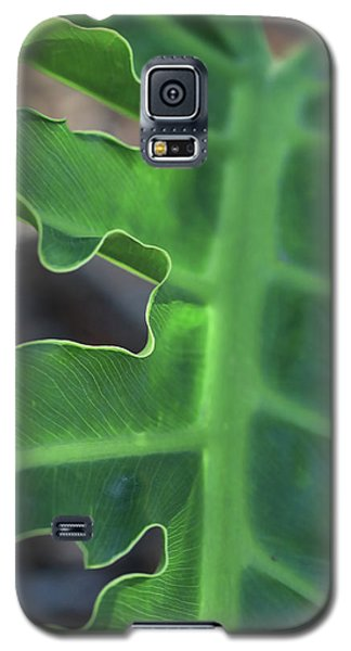 Green Space Galaxy S5 Case