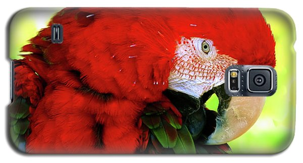 Green-winged Macaw Galaxy S5 Case