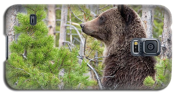 Grizzly Profile Galaxy S5 Case