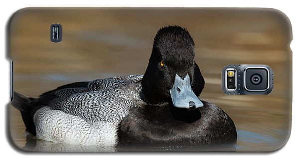 Grumpy Duck Galaxy S5 Case