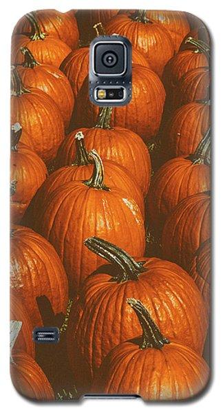 Halloween Harvest - 2 Galaxy S5 Case