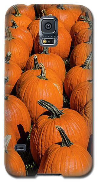 Halloween Harvest Galaxy S5 Case