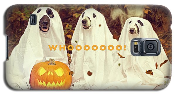 Galaxy S5 Case featuring the photograph Halloween Hounds by ISAW Company