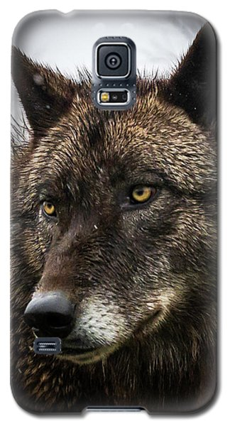 Handsome Boy Galaxy S5 Case