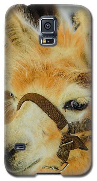 Happy Alpaca Galaxy S5 Case