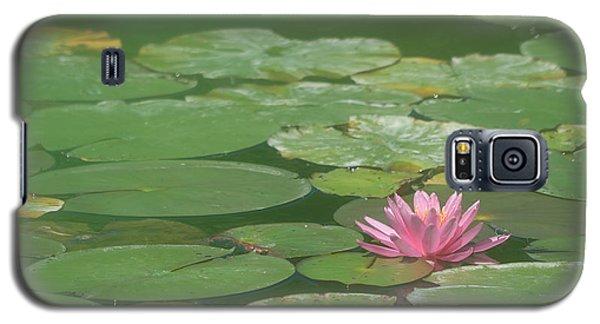 Harmonious Pink Waterlily Galaxy S5 Case