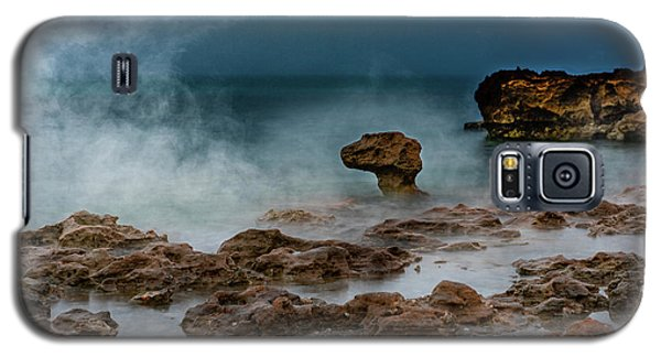 Head Of The Dragon Galaxy S5 Case