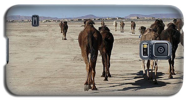 Herd Of Camels Crossing The Highway Near  Rissani Galaxy S5 Case