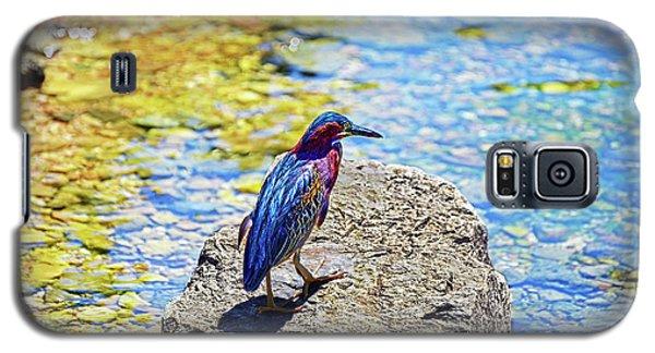 Heron Bluff Galaxy S5 Case