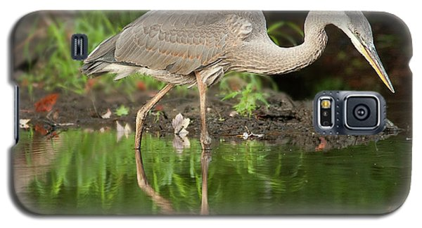 Heron Fishing Galaxy S5 Case