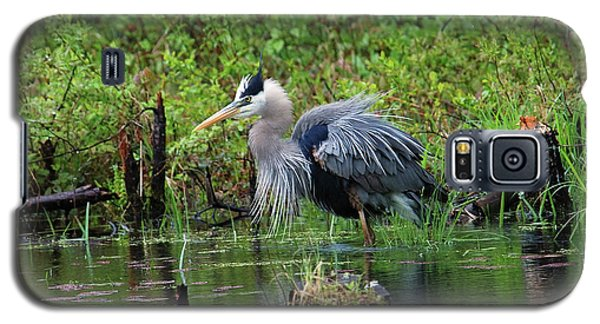 Heron In Beaver Pond Galaxy S5 Case
